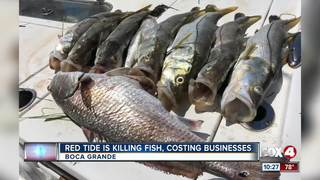 Local captains affected by fish kills