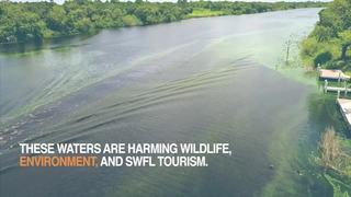 Lake Okeechobee not only culprit in algae blooms