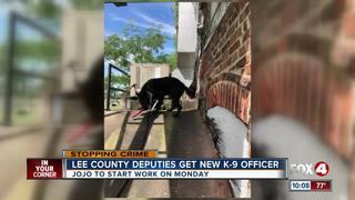 New K-9 officer for Lee County