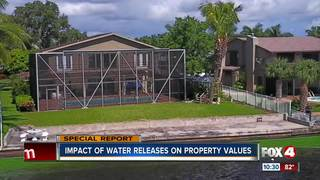Algae threatening home values in Southwest Fla.