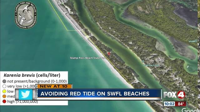 Weekend Beach Guide Where To Go To Avoid Red Tide Fox 4 Now Wftx