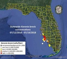 Red tide could impact beach plans this weekend