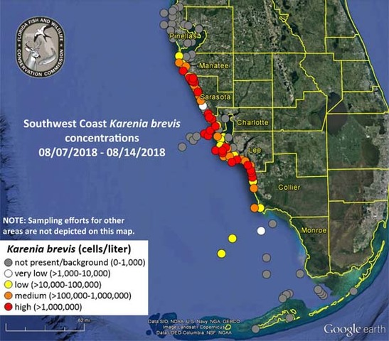 Red Tide Status Report August 10, 2018