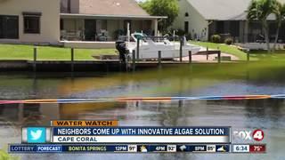 Residents deploy homemade 'boom' to stop algae