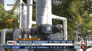 Mote scientists experiment to stop red tide