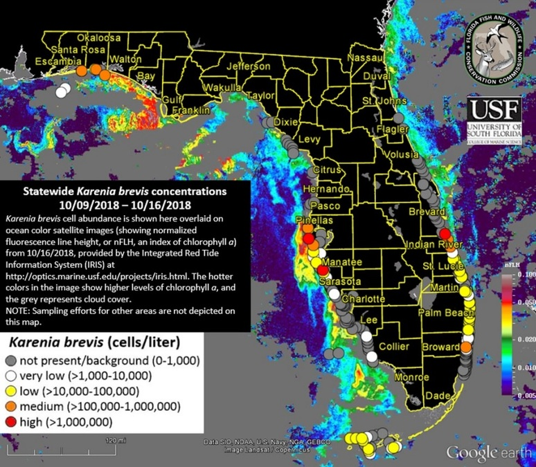 Red tide maps show few spots in Southwest Florida
